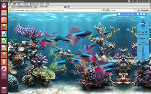 Linux - windows benchmark-screenshot-2012-08-23-11-46