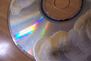 Got a CD that is scratched?!?!-100_2246.jpg