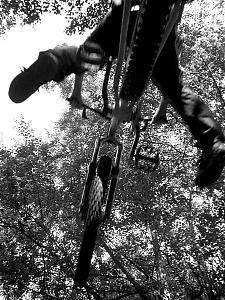 Some biking pics i took-bck.jpg