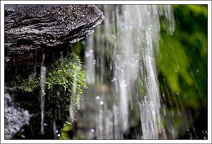 Water I didn't use-waterfall.jpg