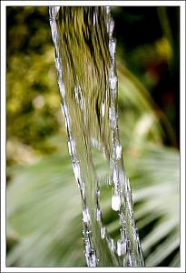 "Fun Photo Assignment #3. ""Water""-c.jpg"