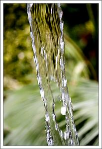 "Fun Photo Assignment 3 ""Water"" - POLL-c.jpg"