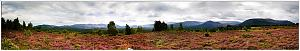 Stopped by the side of the road-cairngorm-pano-large.jpg