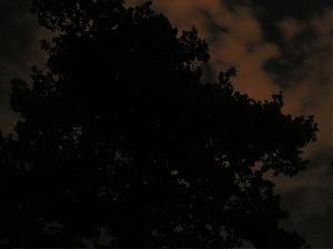 "Photo Comp on the theme ""dark"", vote here!-midnight.jpg"