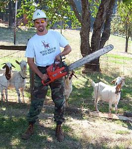 Picture fight.-chainsaw.jpg