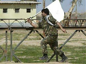 Picture fight.-surrender.jpg