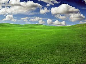 Upload your wallpaper creations to aoafiles!-green-grass.jpg
