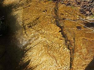 Firiza lake yesterday-dscf1906.jpg