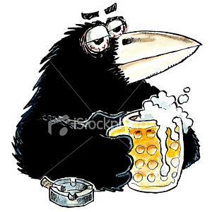 Picture fight.-ist2_415938_drunk_crow.jpg