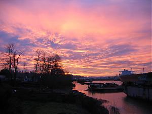 Morning in Portland-img_2979.jpg