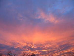 Morning in Portland-img_2980.jpg