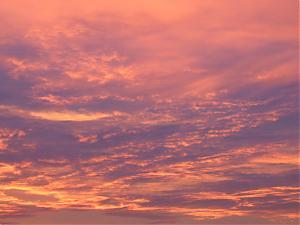 Morning in Portland-img_2981.jpg
