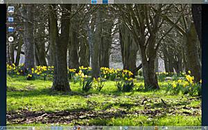 Spring photo-screenshot-spring.png