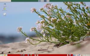 Beach photos-mint-desktop.png