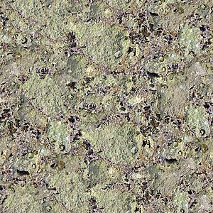 Camoflage seamless texture maps - free to use-rock_coastal_limpets_2048.jpg