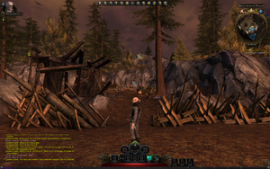 Neverwinter Free MMO-neverwinter57.png