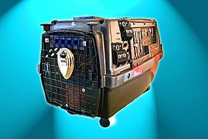 My Photos of PetCarrier II-_mg_3065-wcopy-copy.jpg