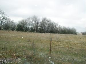Ice storm-100_0301.jpg