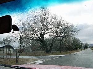Ice storm-100_0304.jpg