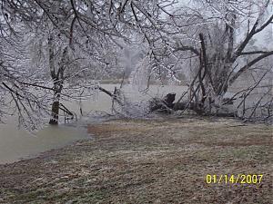 Ice storm-_100_0420.jpg