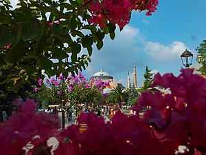 Istanbul-dscf6172.jpg