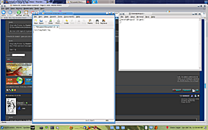 Fedora 10...another failed courtship?-gedit-shot.png
