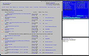 Help with display and window managers-wmii.jpeg