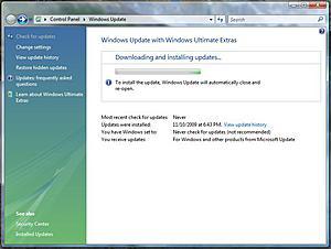 Fedora update problem...???-windupd.jpg