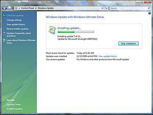 Fedora update problem...???-windupd1.jpg