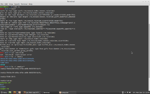 Can Mint read NTFS-screenshot-2012-12-10-22-44